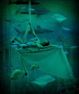 PIPA Merit Award - Carol Robinson (Australia)<br />Underwater World