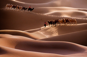 PhotoVivo Honor Mention - Yongxiong Ling (Australia)<br />Desert