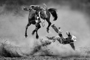 PhotoVivo Honor Mention - Kam Chiu Tam (Canada)<br />The Fury Horse