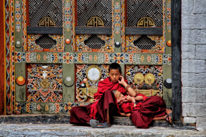 PhotoVivo Honor Mention - Shirley Ong (Singapore)<br />Lamas At Rest