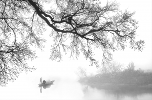 RPS Bronze Medal - Ge Zheng (China)<br />The Mist Boat