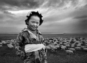 PIPA Merit Award - Ruisheng Zhou (China) <br /> The Shepherd