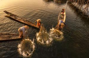 APU Honor Mention e-certificate - Jing Li (China) <br /> Fishing Life