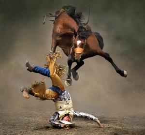 APAS Gold Medal - Kam Chiu Tam (Canada) <br /> Horse In Air
