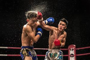 PhotoVivo Gold Medal - Chan Ieong Tam (Macau) <br /> Boxing3