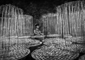 PIPA Merit Award e-certificate - Dao Tien Dat (Vietnam)  The Silks Of Candy